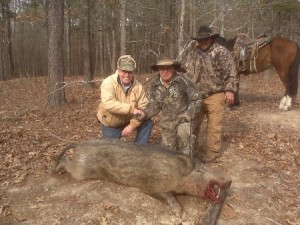 jerry-boar